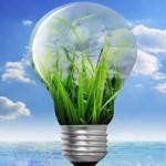 green-shoots-light-bulb960-640