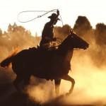 cowboy-with-lasso