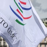WTO Committee Agrees To Keep IP From Non-Violation Complaints Until 2017