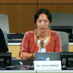 Shared Experiences Of Indigenous Peoples In The WIPO Negotiating Process